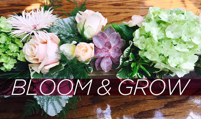Bloom & Grow — The Best Flowers of the Season